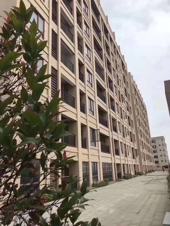 沙田小产权房