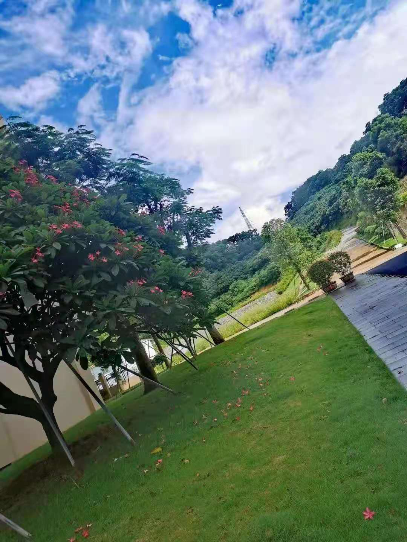 凤岗-【龙凤畔山】3栋花园洋房400套 首付3成,贷款7成供8年
